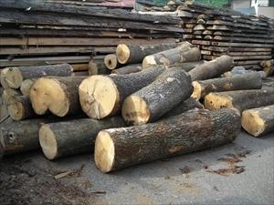 材木 天日干し